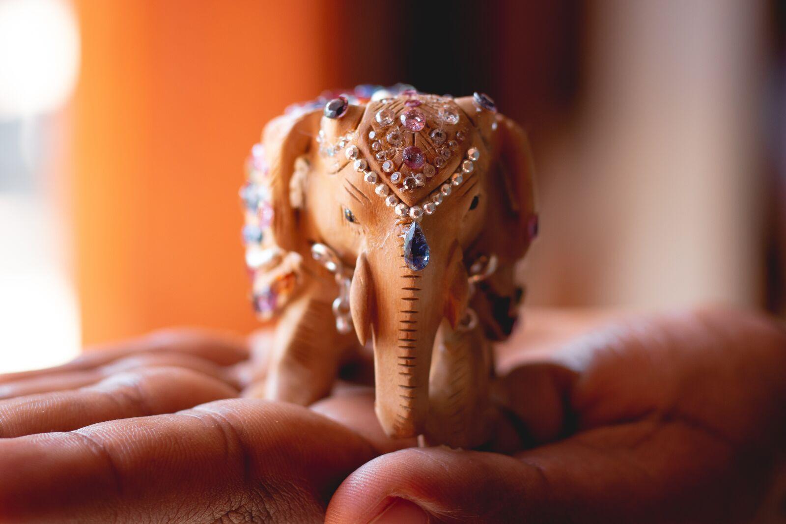 """Canon EOS 70D sample photo. """"Elephant, gem, diamond"""" photography"""