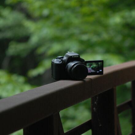 blurred, bridge, camera, canon, Nikon D200