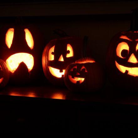 carvings, halloween, jack, o, Canon EOS REBEL T4I