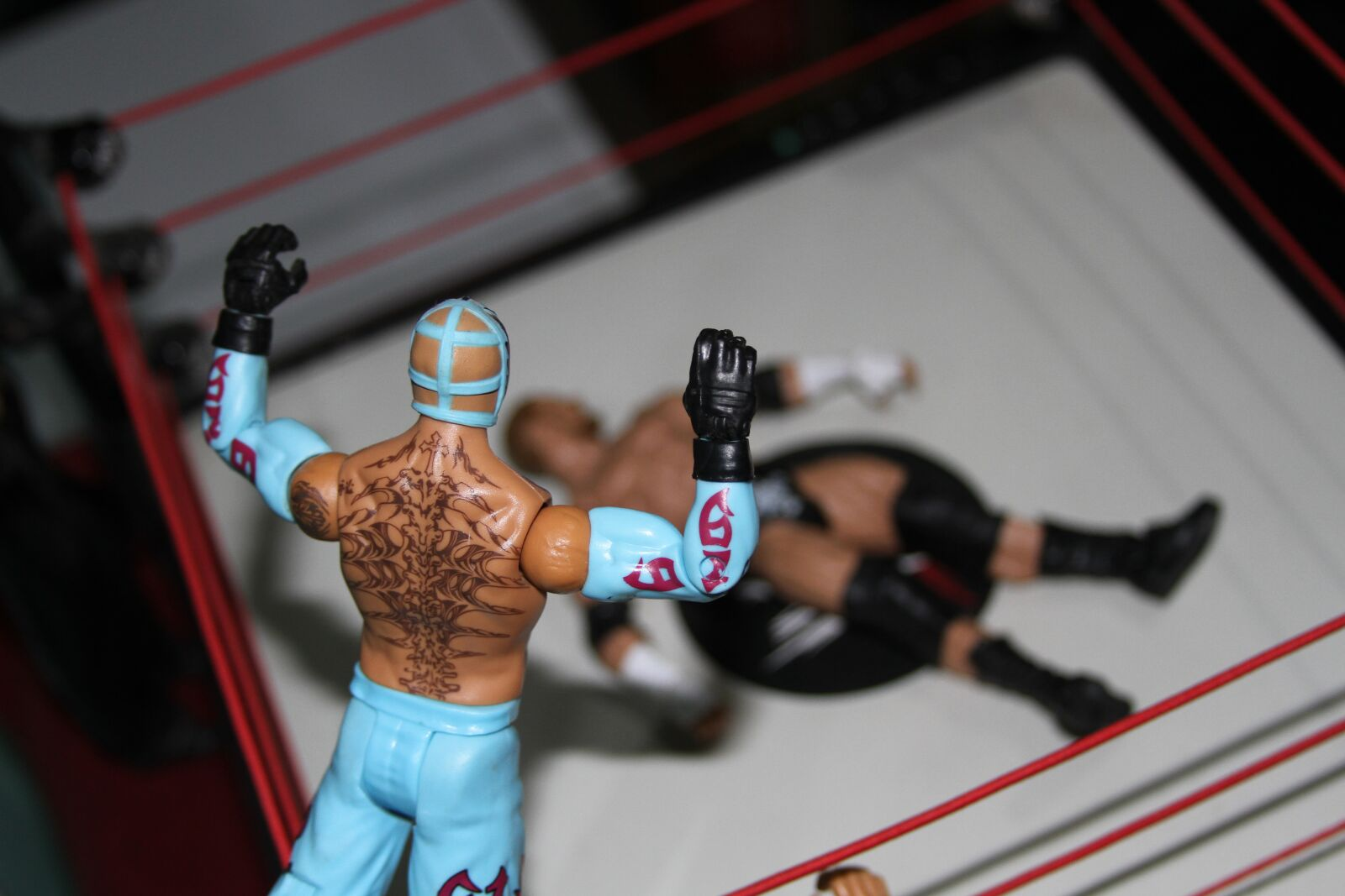 """Canon EOS 7D sample photo. """"Wwe, figurines, wrestlers"""" photography"""
