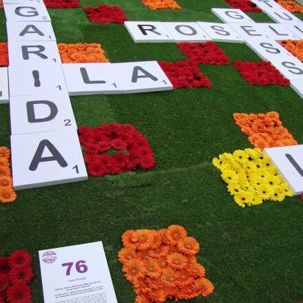 crossword, flower carpet, flower, Sony DSC-W210