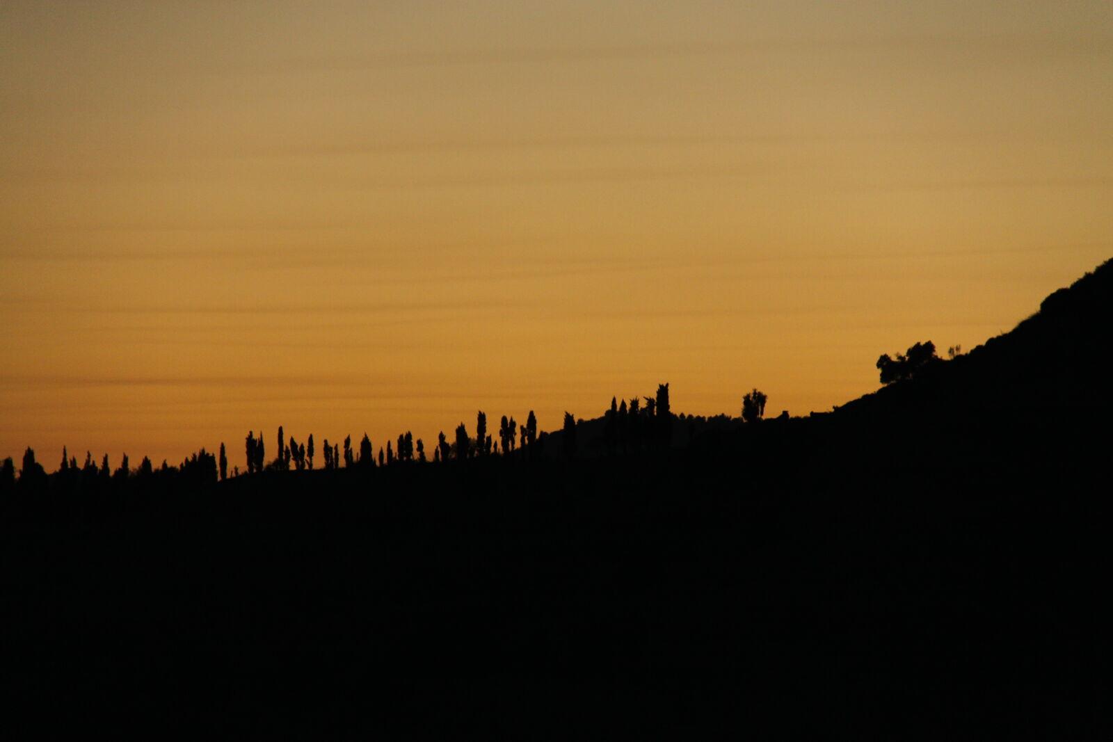 "Canon EOS 50D sample photo. ""Evening, sun, sundown"" photography"
