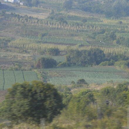 farm, scenery, Nikon D3200