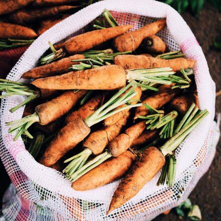carrots, food, fresh, Fujifilm X-Pro2