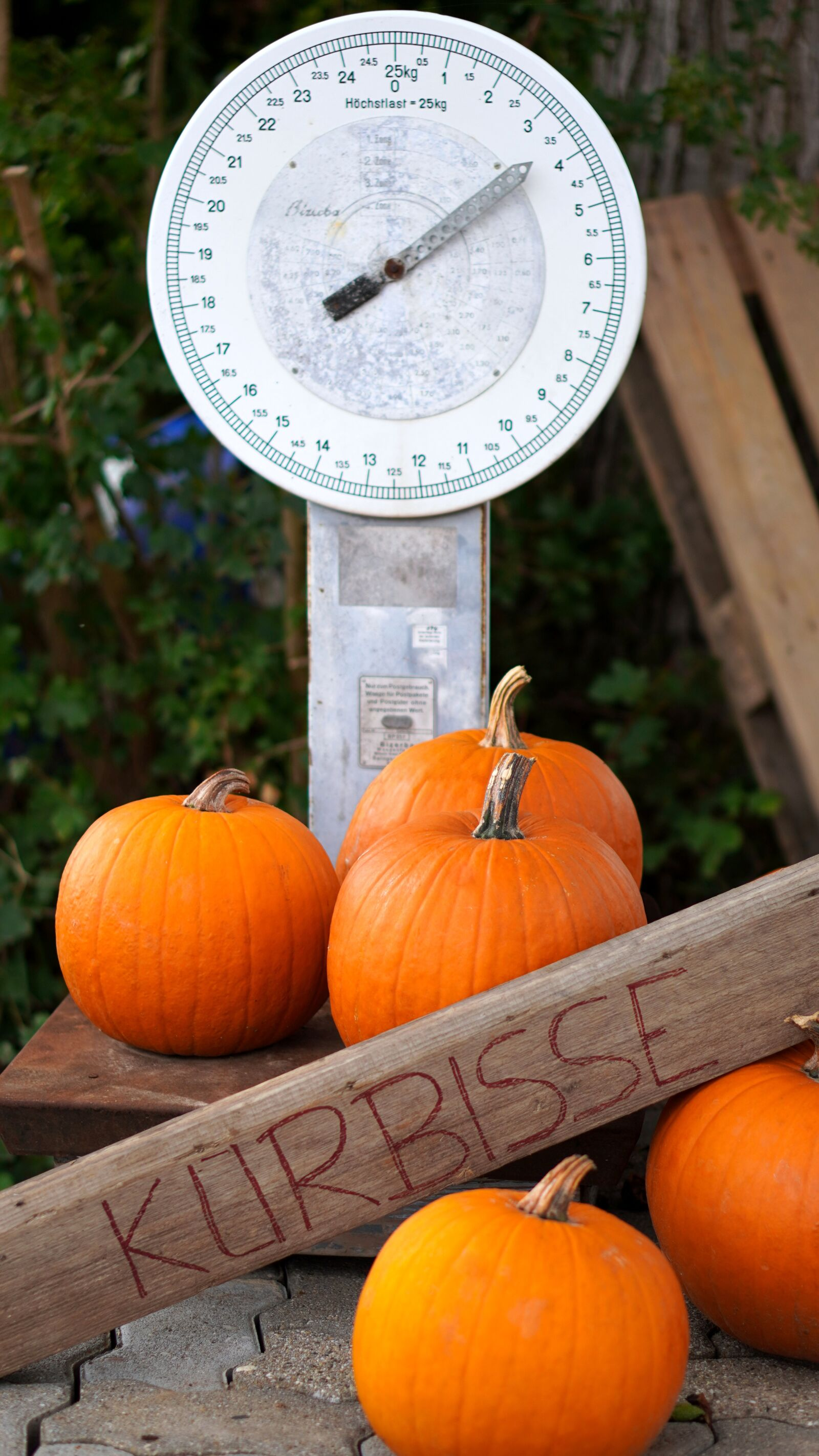 """Sony a6400 sample photo. """"Weighing scale, pumpkins, vegetables"""" photography"""