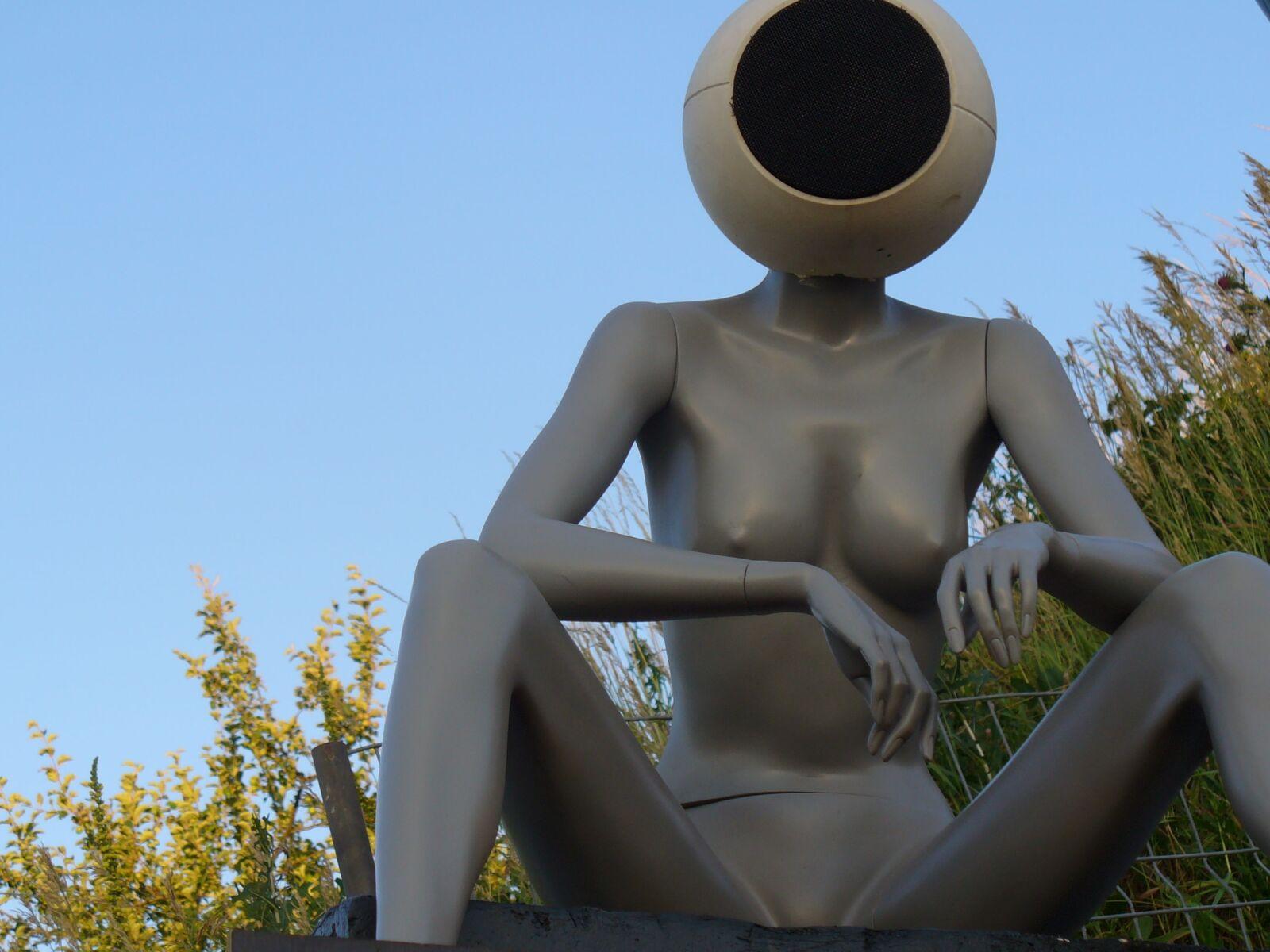 "Panasonic DMC-LZ1 sample photo. ""Sculpture, festival, merger"" photography"