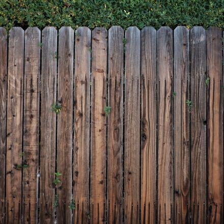 fence, wood, wooden, Fujifilm X-E2