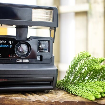 instant, retro, photo, Canon EOS REBEL T6S