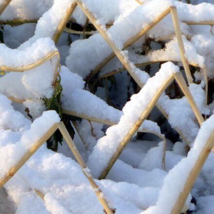 straws, winter, snow, Panasonic DMC-LS85