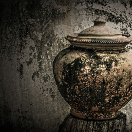 jar, old, moss, Canon EOS 7D
