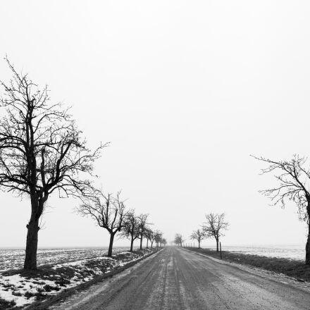 bw, fog, monochrome, road, Canon EOS 5D MARK II