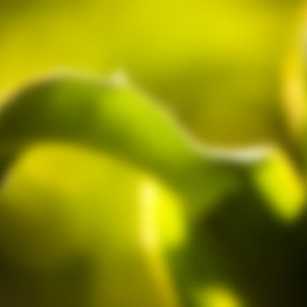 background, blur, blurred, green, Canon EOS 5D MARK II
