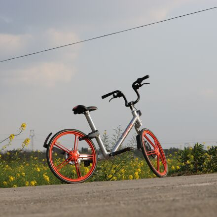 holiday, bike, transport, Canon EOS 750D