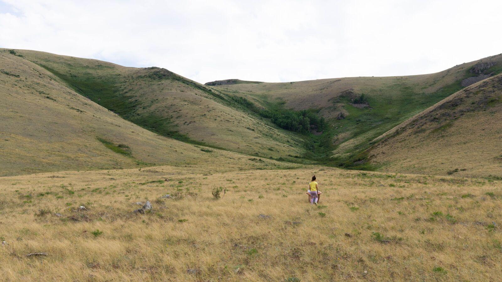 steppe, landscape, semeynogo