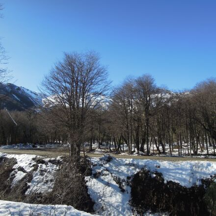 snow, trees, mountain, Nikon COOLPIX P300