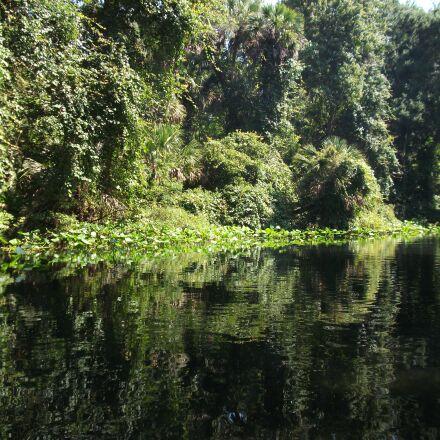 lake, trees, reflection, Fujifilm FinePix AV100