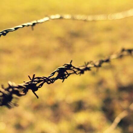 barrier, fall, spice, Canon EOS 70D