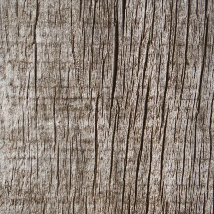 wood, texture, background, Fujifilm FinePix XP60