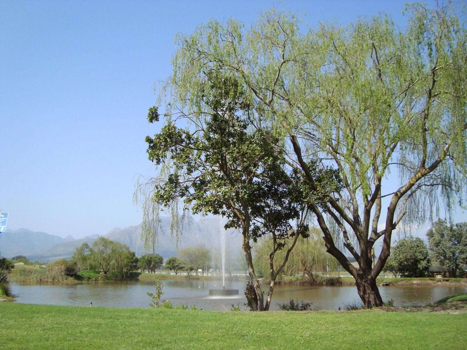 fountain, stellenbosch, winelands