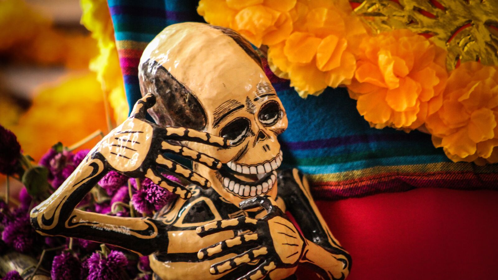 """Canon EOS 600D (Rebel EOS T3i / EOS Kiss X5) sample photo. """"Skull, day of the"""" photography"""