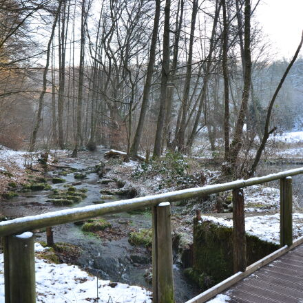 bridge, brook, cold, forest, Nikon D3100