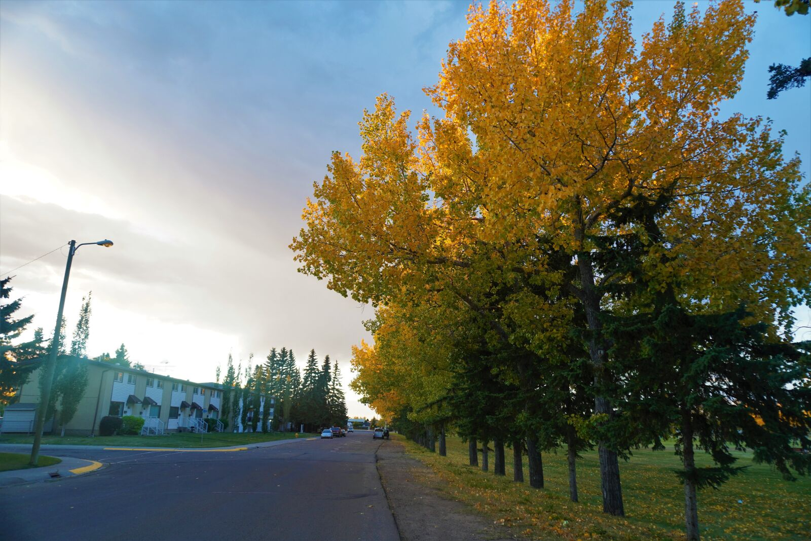 "Sony a6400 sample photo. ""Alberta, fall sunsets, vegreville"" photography"