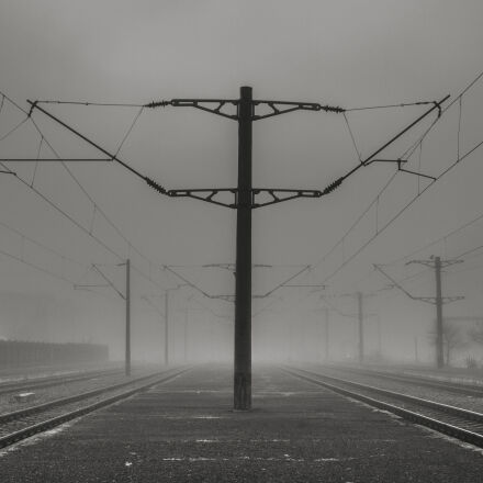 black, and, white, fog, Canon EOS 550D