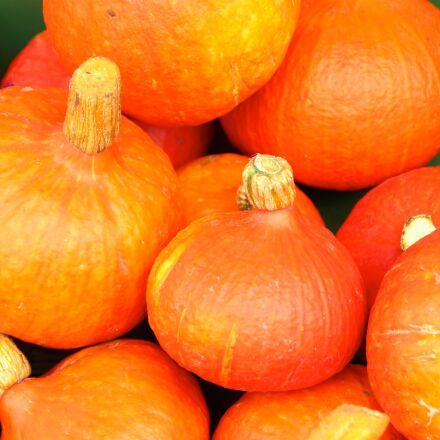 pumpkin, autumn, halloween, Canon EOS 600D