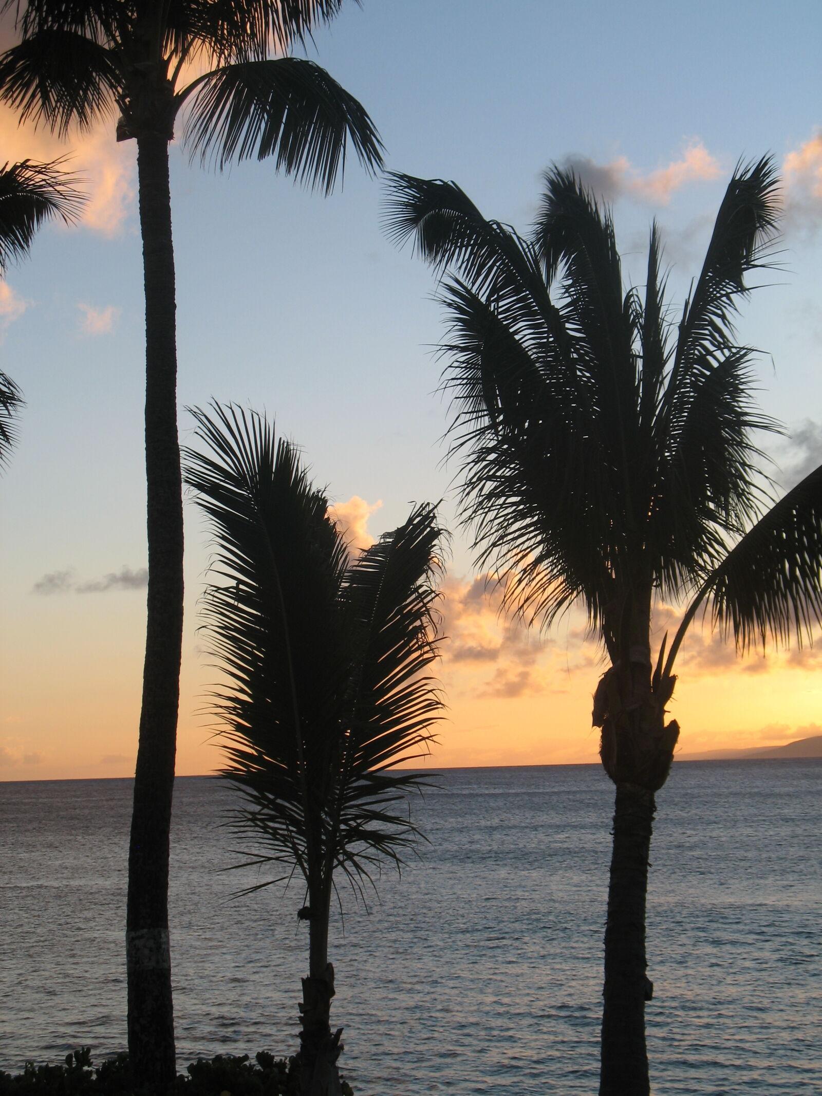 "Canon POWERSHOT A620 sample photo. ""Palms, sunset"" photography"