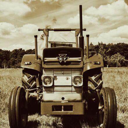 tractor, oldtimer, massey ferguson, Nikon 1 V2