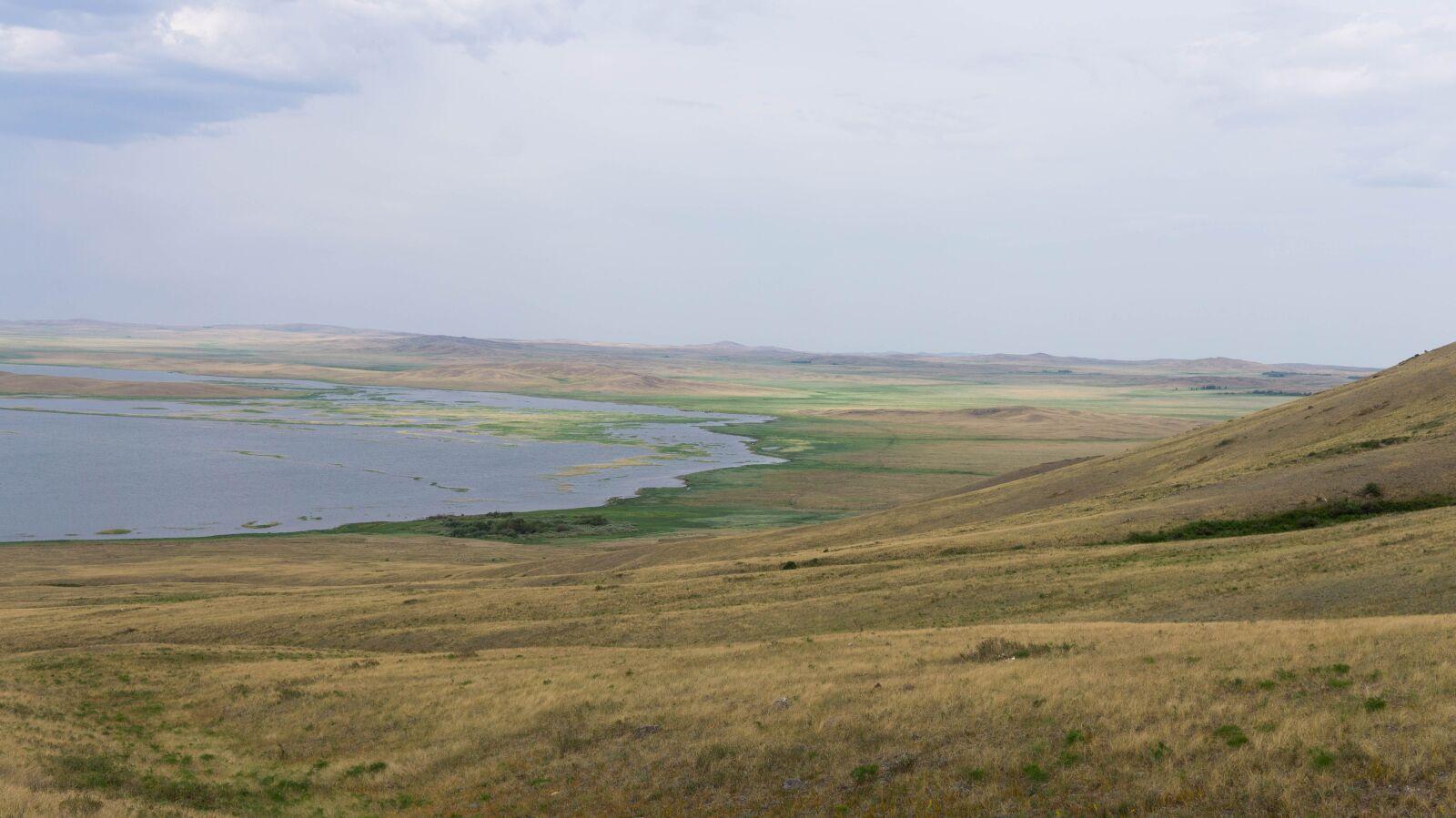 lake, nature, steppe