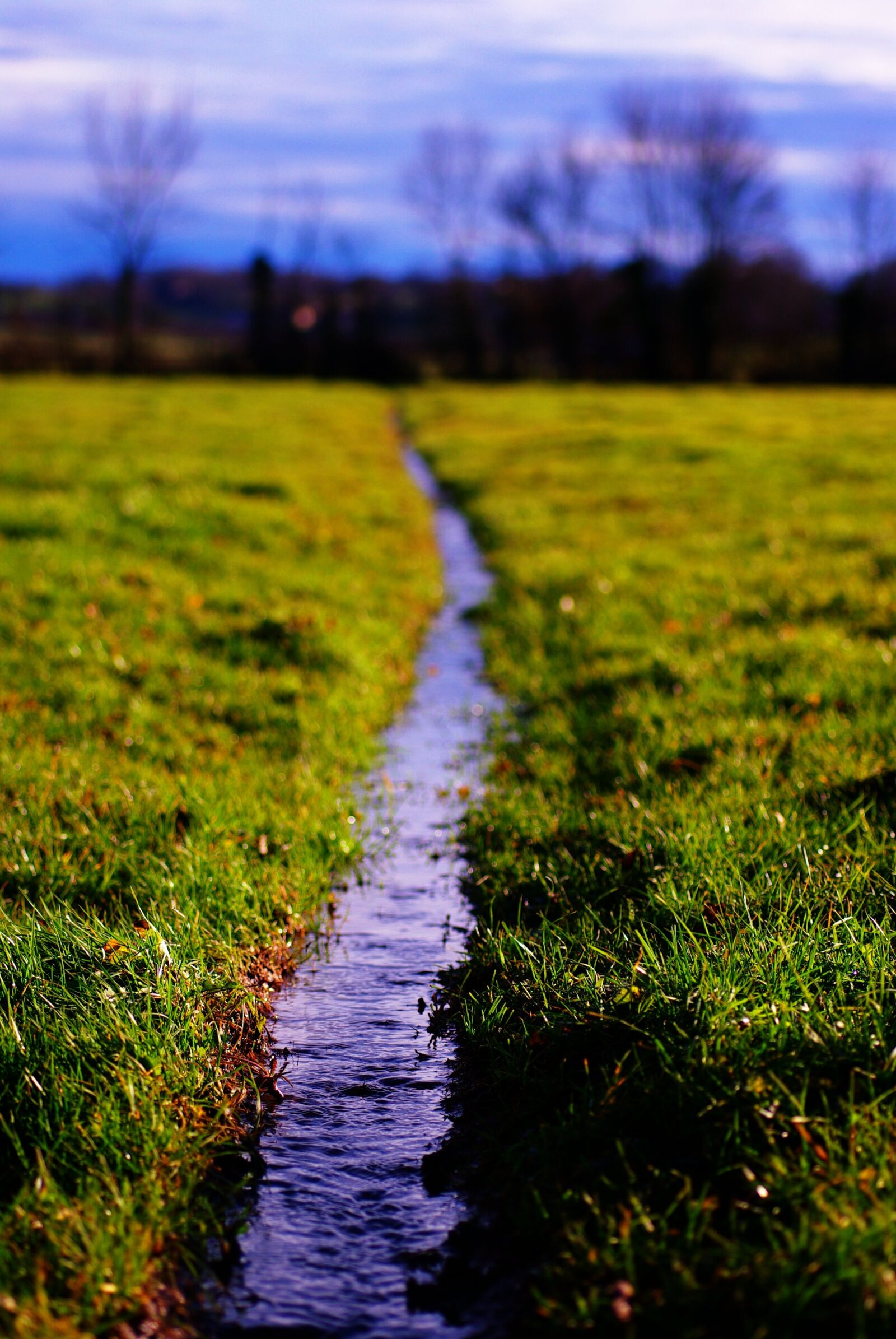 """Pentax K10D sample photo. """"Water, meadows, pre"""" photography"""
