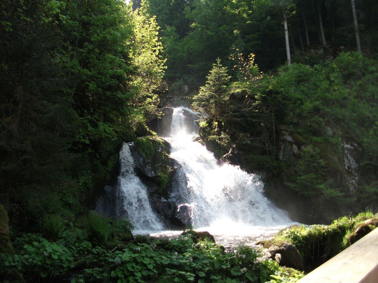 waterfall, of triberg, germany