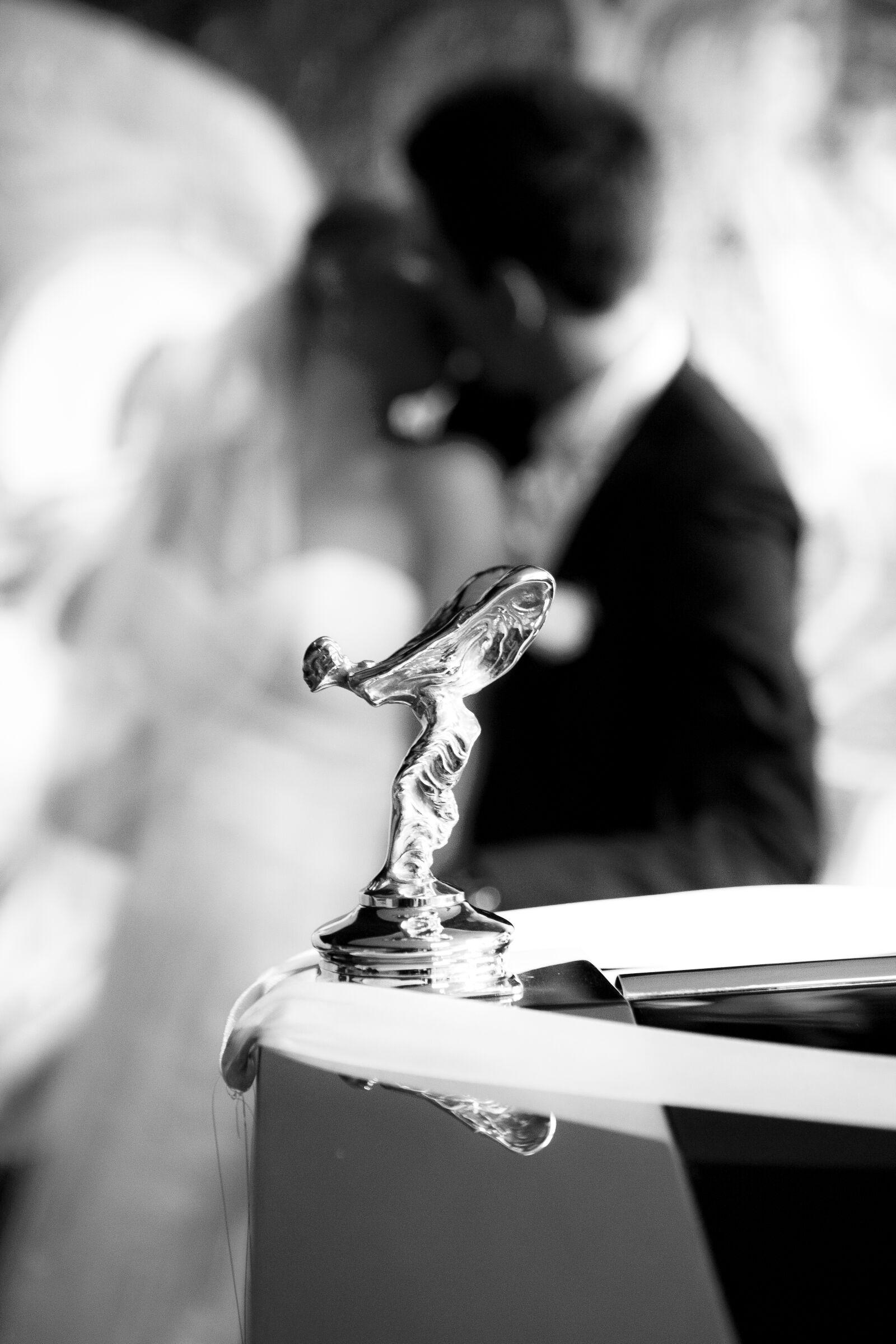 bridal, dress, bride, bride photography