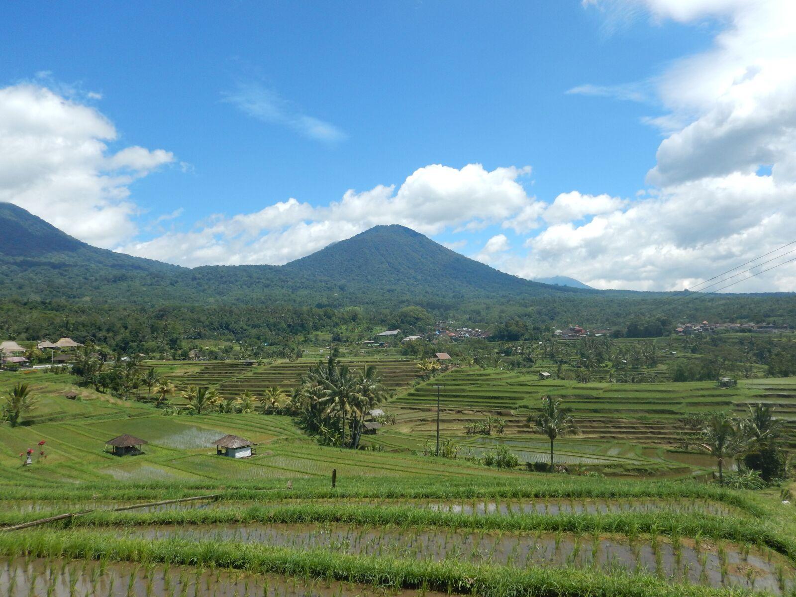 "Nikon Coolpix AW120 sample photo. ""Rice field, bali, indonesia"" photography"