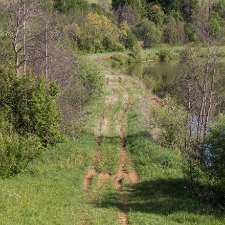 road, trail, grass, Sony SLT-A65