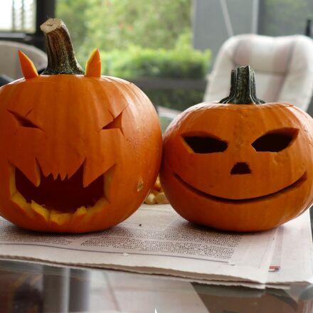 pumpkins, halloween, couple, Panasonic DMC-LZ7