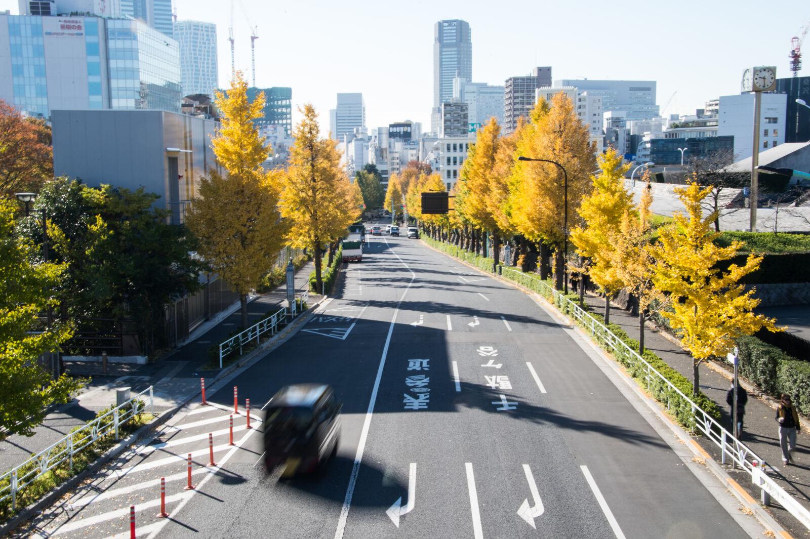 """Nikon Df sample photo. """"Autumn, autumn, colours, street"""" photography"""