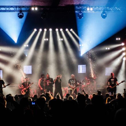 audience, band, concert, crowd, Nikon D7000