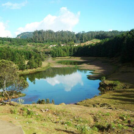 greenery, lake, pond, reflection, Sony DSC-P73