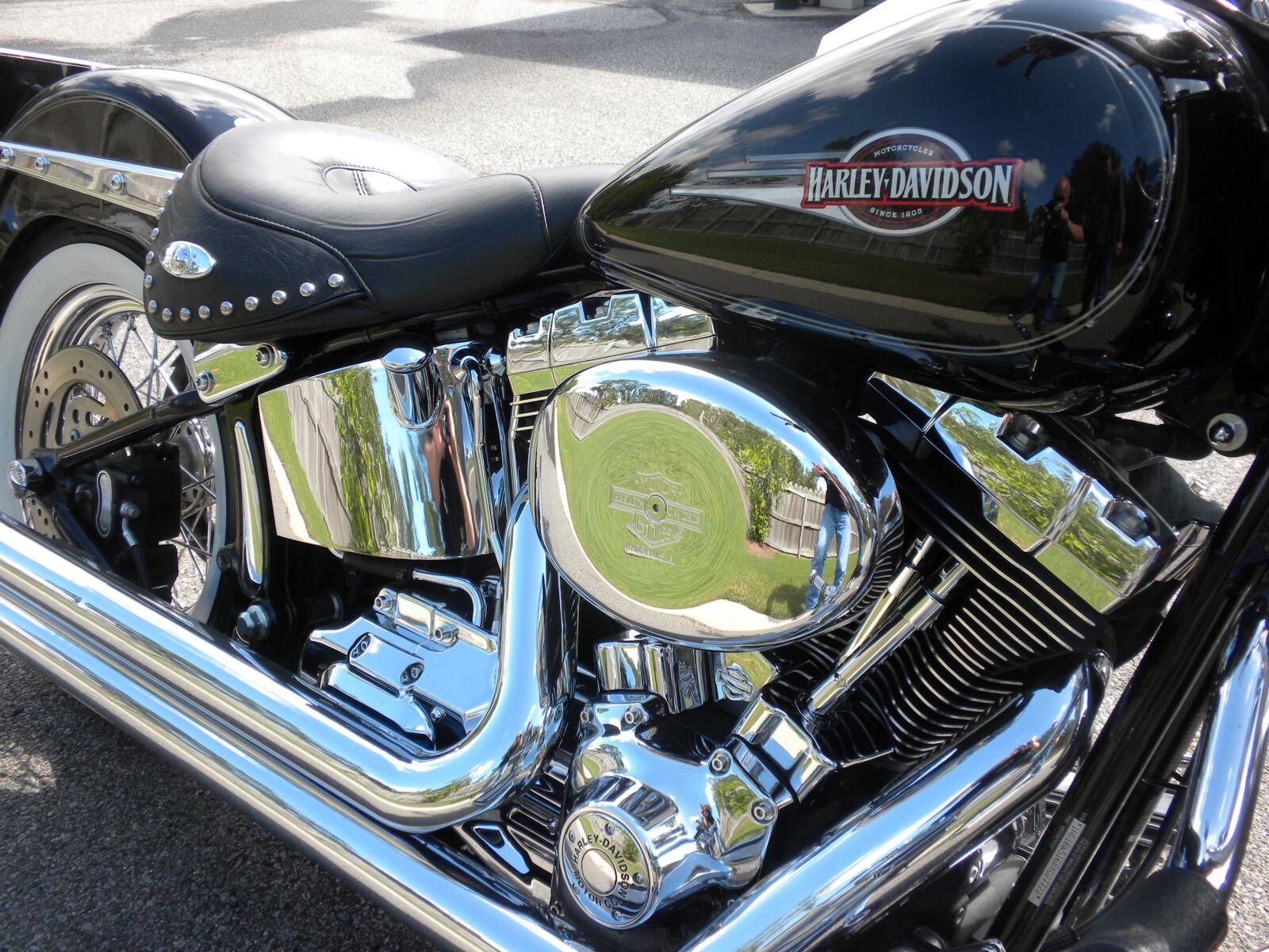 motorcycle, harley, chopper