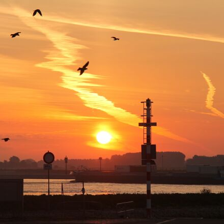 sunrise, birds, water, Canon EOS 1100D