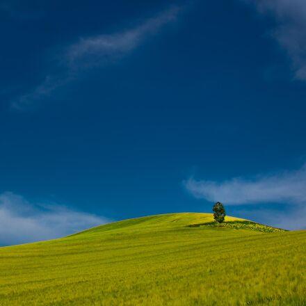 agriculture, blue, blue, sky, Canon EOS 60D