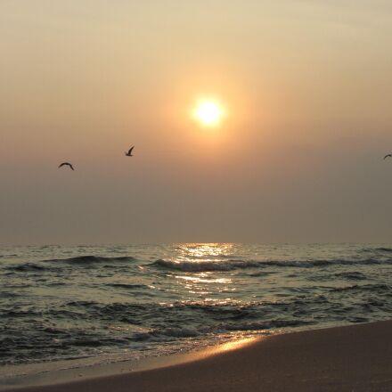 baltic sea, sunrise, birds, Canon POWERSHOT SX1 IS