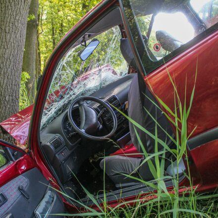 accident, crash, tree, Canon EOS 600D