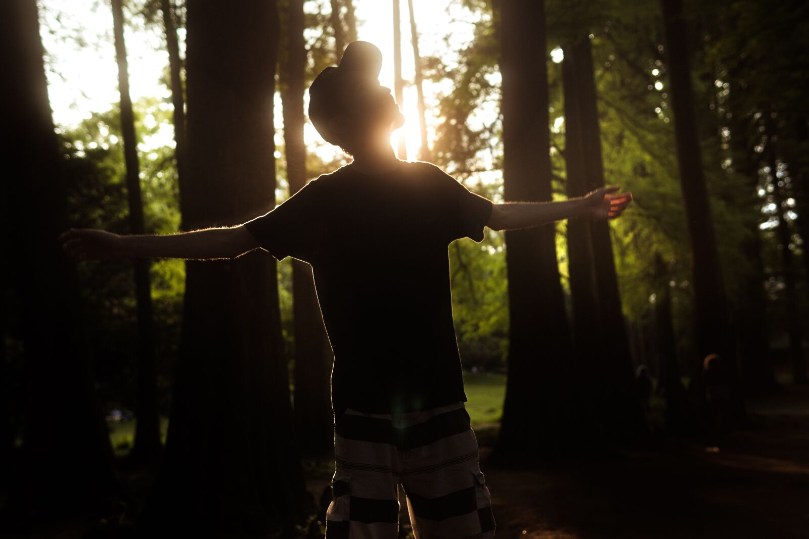 """Sony a6300 sample photo. """"Man, freedom, forest"""" photography"""