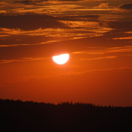 orange, sunset, treeline, Nikon D50