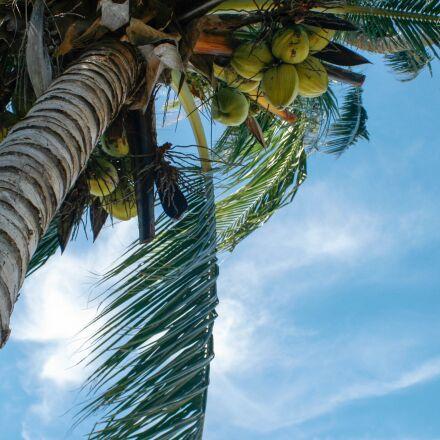 sea, sky, 7 days week, Canon EOS 400D DIGITAL