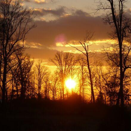 sunset, forest, mountain, Panasonic DMC-LZ7