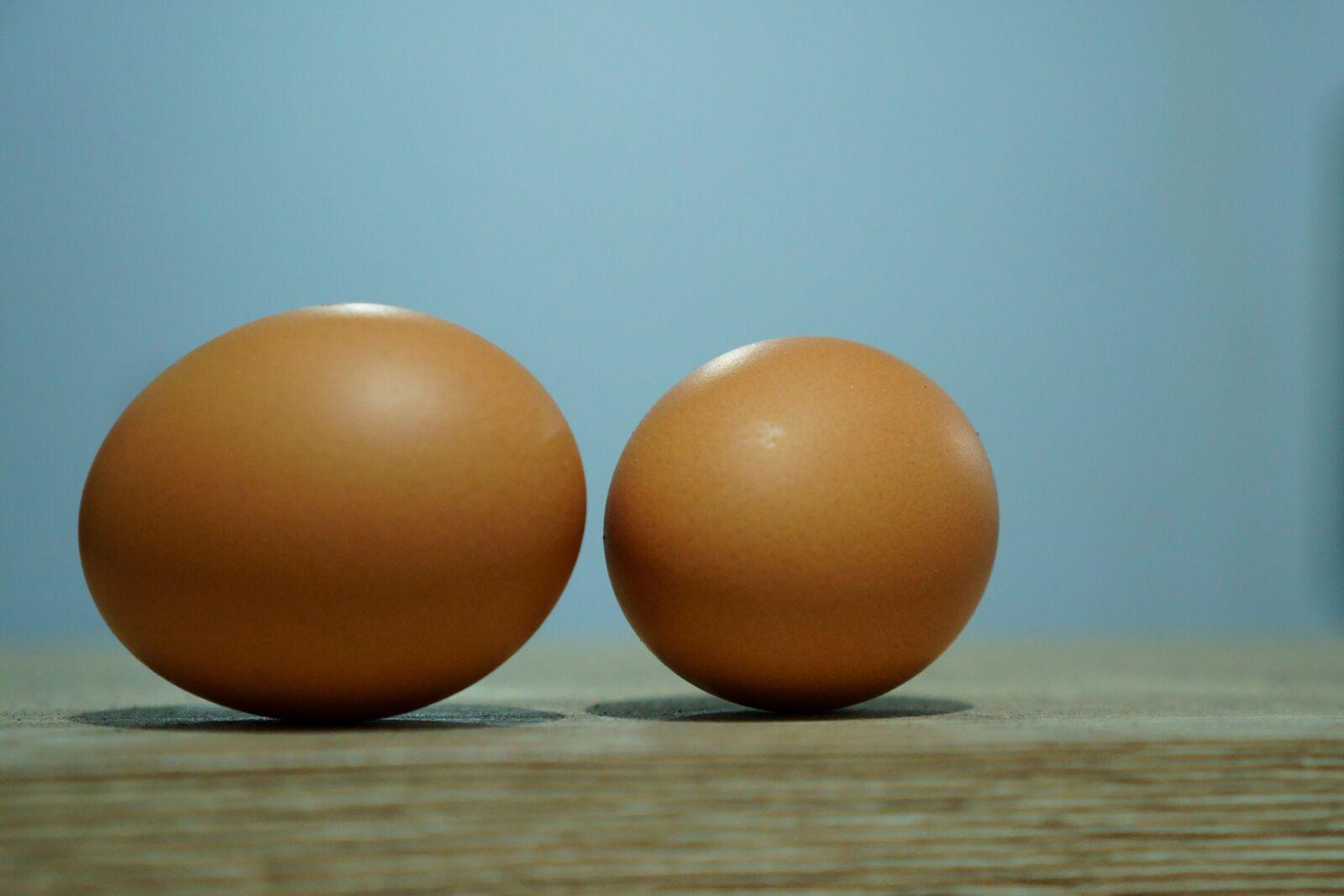 "Sony a6400 sample photo. ""Eggs, eggshells, protein"" photography"